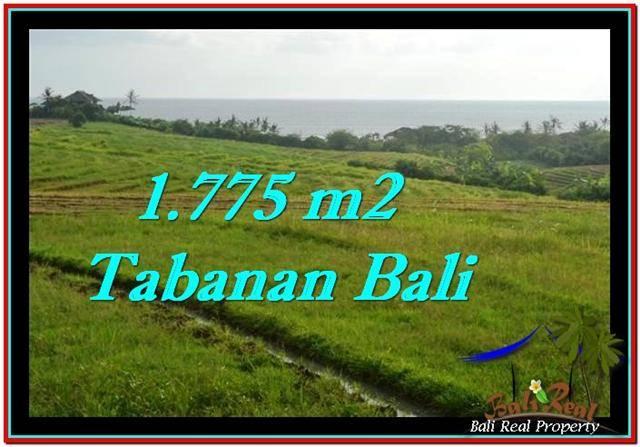 FOR SALE LAND IN Tabanan Selemadeg BALI TJTB251
