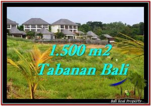 Exotic LAND FOR SALE IN TABANAN TJTB252