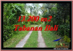 FOR SALE Magnificent 13,200 m2 LAND IN TABANAN BALI TJTB255
