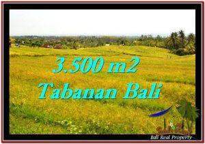 Affordable PROPERTY 3,500 m2 LAND IN Tabanan Selemadeg FOR SALE TJTB259