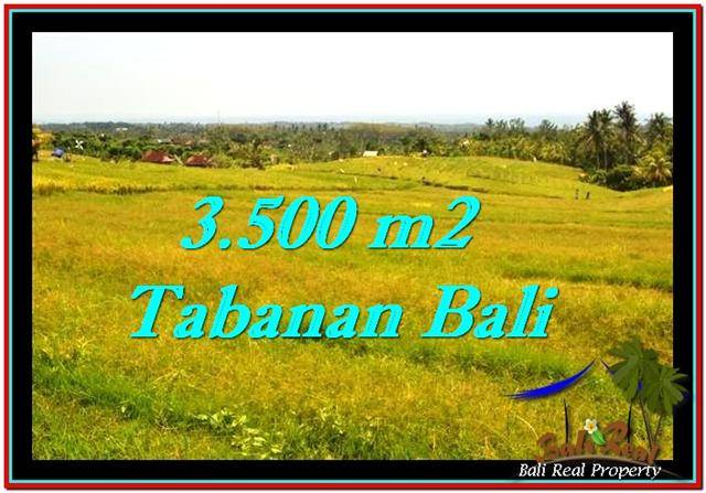 Exotic 3,500 m2 LAND SALE IN TABANAN BALI TJTB259