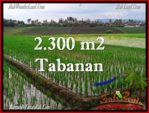 Affordable PROPERTY 2,400 m2 LAND FOR SALE IN Tabanan Selemadeg TJTB263