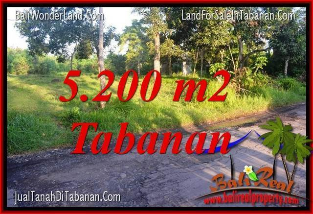Affordable PROPERTY 5,200 m2 LAND FOR SALE IN Tabanan Selemadeg BALI TJTB334