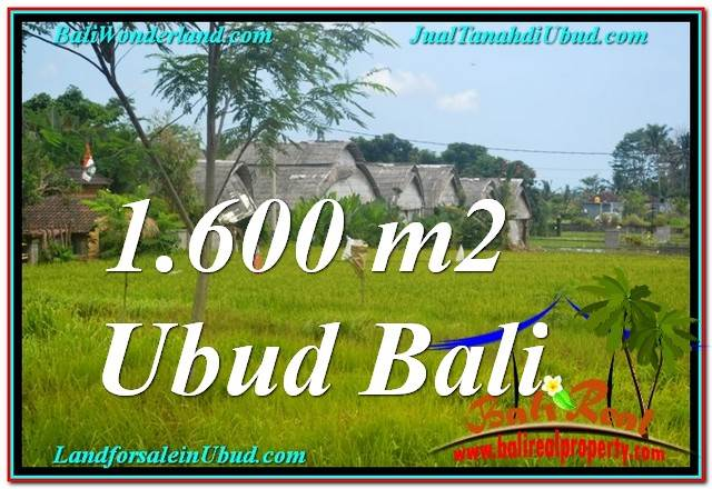 Affordable PROPERTY LAND IN Sentral / Ubud Center BALI FOR SALE TJUB633