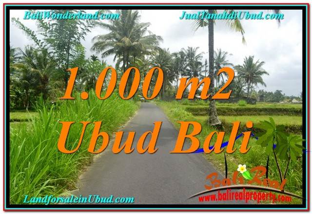 FOR SALE Beautiful LAND IN Ubud Tampak Siring BALI TJUB634
