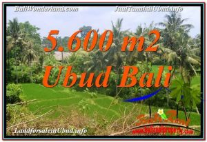 FOR SALE Affordable 5,600 m2 LAND IN UBUD TJUB636