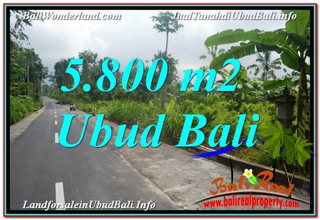 Magnificent 5,800 m2 LAND FOR SALE IN UBUD TJUB637