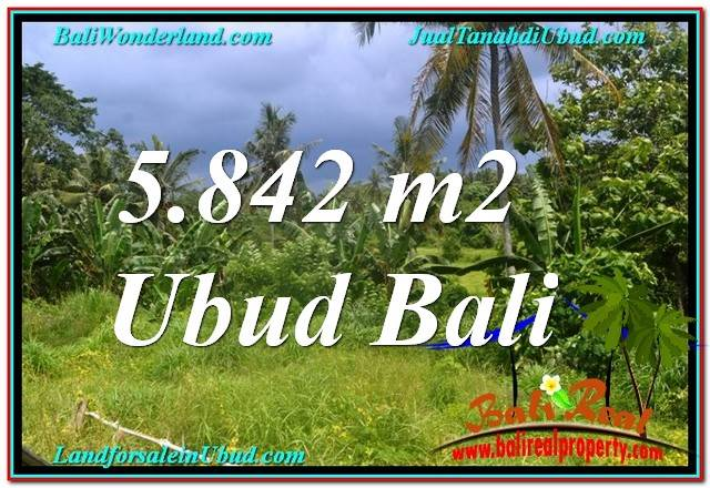 FOR SALE Beautiful 5,842 m2 LAND IN Sentral / Ubud Center BALI TJUB638