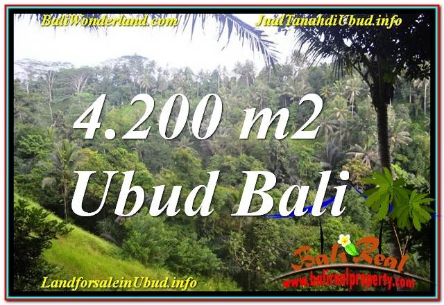 Beautiful PROPERTY 4,200 m2 LAND FOR SALE IN UBUD BALI TJUB639