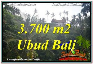 Exotic 3,700 m2 LAND FOR SALE IN UBUD BALI TJUB640