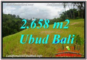 FOR SALE Magnificent 2,658 m2 LAND IN UBUD BALI TJUB641