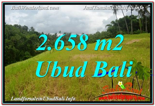 Magnificent Sentral / Ubud Center LAND FOR SALE TJUB641