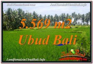Affordable PROPERTY LAND FOR SALE IN UBUD TJUB642
