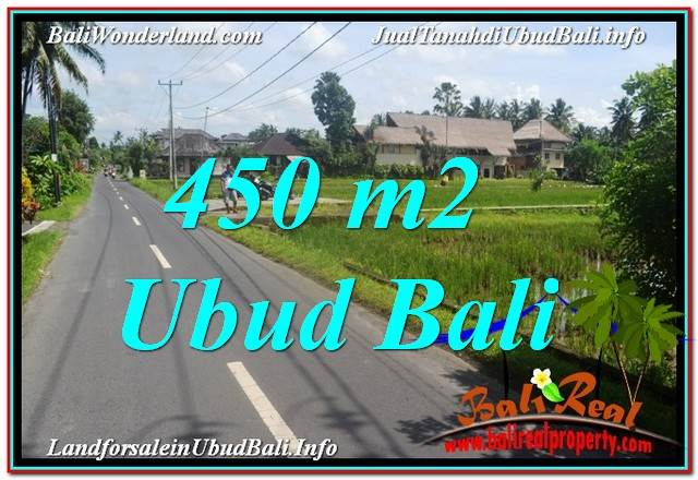 FOR SALE Magnificent PROPERTY 450 m2 LAND IN UBUD TJUB647