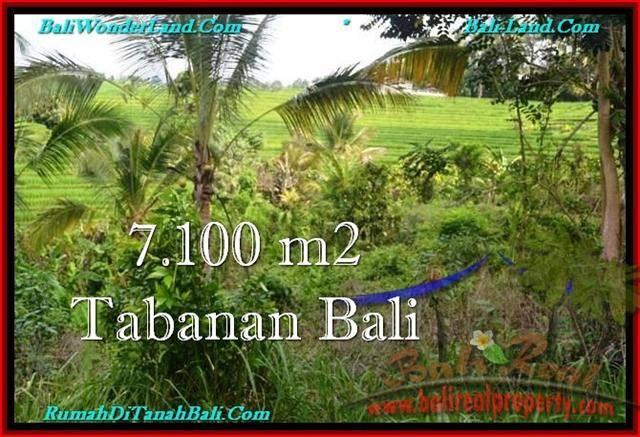 Exotic PROPERTY Tabanan Selemadeg 7,100 m2 LAND FOR SALE TJTB240