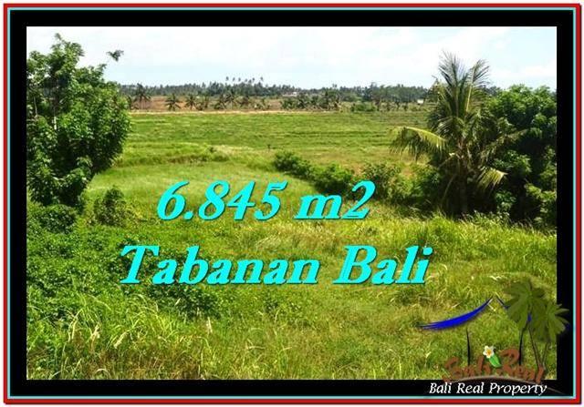 6,845 m2 LAND IN TABANAN BALI FOR SALE TJTB245