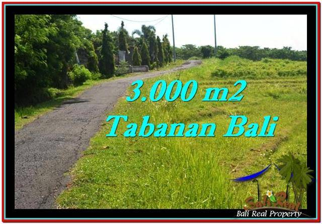 Exotic 3,000 m2 LAND SALE IN TABANAN BALI TJTB246