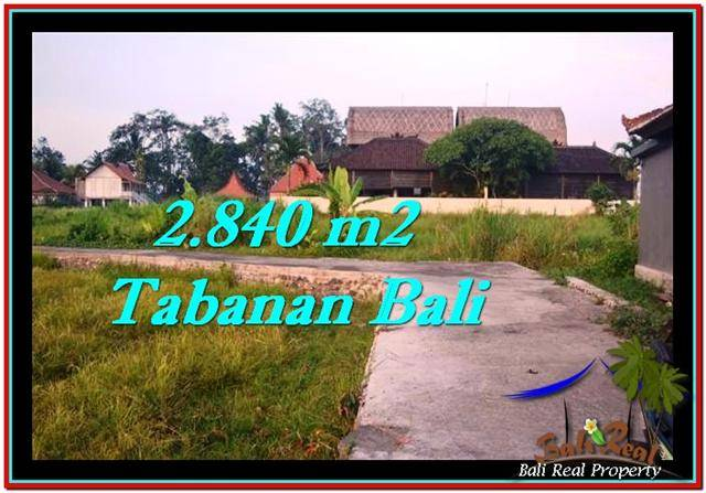 FOR SALE Magnificent 2,840 m2 LAND IN TABANAN BALI TJTB247