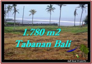 Magnificent PROPERTY 1,780 m2 LAND SALE IN Tabanan Selemadeg TJTB249