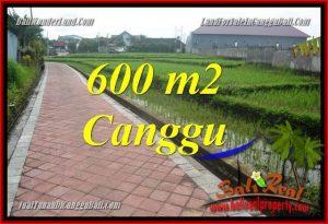 Affordable PROPERTY 600 m2 LAND SALE IN CANGGU TJCG220