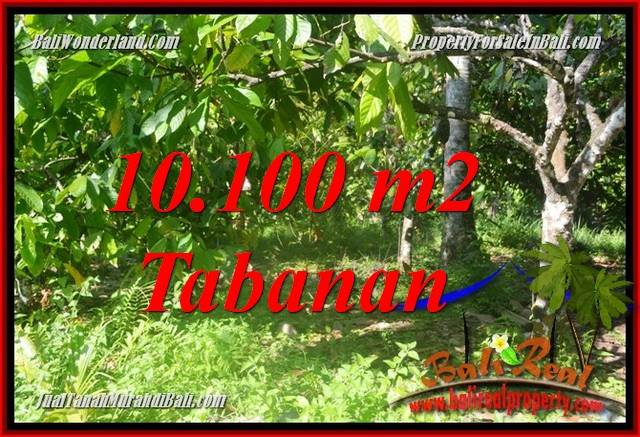 Exotic Tabanan Selemadeg Barat BALI 10,100 m2 LAND FOR SALE TJTB360