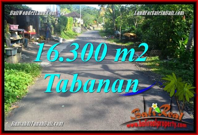 16,300 m2 LAND FOR SALE IN TABANAN BALI TJTB361