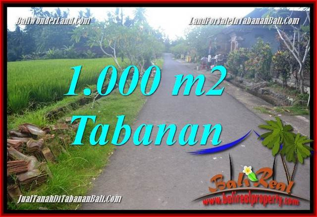 Magnificent PROPERTY TABANAN BALI 1,000 m2 LAND FOR SALE TJTB363