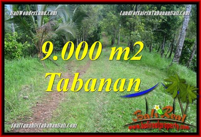 Magnificent PROPERTY LAND FOR SALE IN Tabanan Selemadeg Timur TJTB364