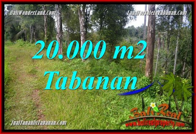 Exotic PROPERTY 20,000 m2 LAND IN Tabanan Selemadeg Timur BALI FOR SALE TJTB365