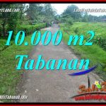 Affordable PROPERTY LAND FOR SALE IN Tabanan Selemadeg BALI TJTB354