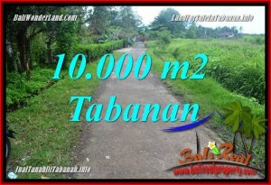 Affordable PROPERTY LAND FOR SALE IN Tabanan Selemadeg BALI TJTB354