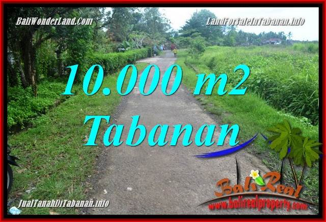 FOR SALE Exotic PROPERTY 10,000 m2 LAND IN TABANAN TJTB354