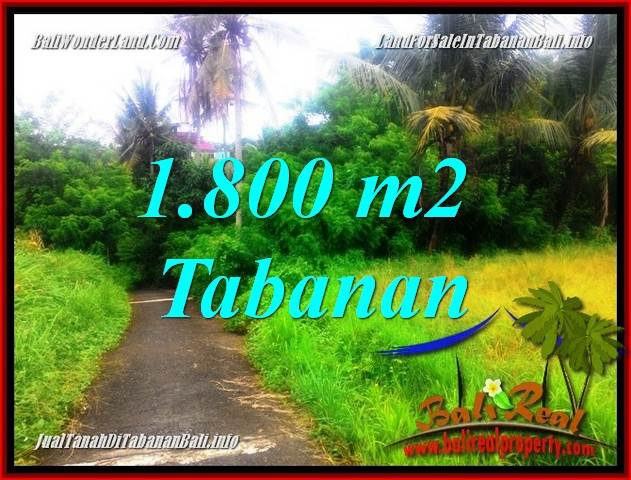 FOR SALE Exotic PROPERTY 1,850 m2 LAND IN Tabanan Selemadeg TJTB357