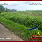 Beautiful LAND FOR SALE IN Tabanan Selemadeg BALI TJTB354