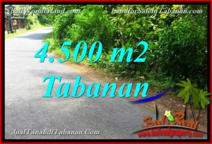 Beautiful PROPERTY TABANAN BALI LAND FOR SALE TJTB380