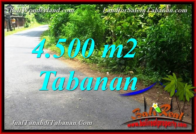 FOR SALE Beautiful PROPERTY 4,500 m2 LAND IN Tabanan Selemadeg BALI TJTB380