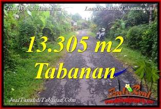 Affordable PROPERTY 13,305 m2 LAND IN TABANAN BALI FOR SALE TJTB367