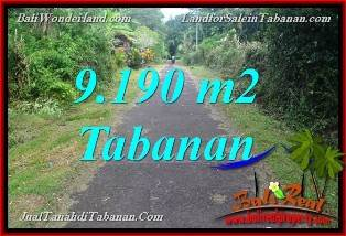 FOR SALE Exotic PROPERTY 9,190 m2 LAND IN Tabanan Selemadeg BALI