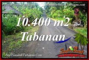 Beautiful PROPERTY 10,400 m2 LAND FOR SALE IN TABANAN Selemadeg Timur TJTB369
