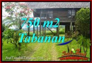 FOR SALE Affordable PROPERTY 750 m2 LAND IN Tabanan Bedugul TJTB370