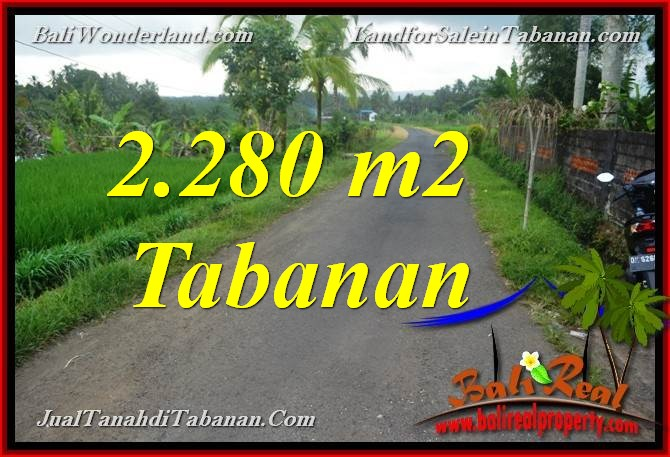 FOR SALE Beautiful PROPERTY 2,280 m2 LAND IN Tabanan Selemadeg BALI TJTB374