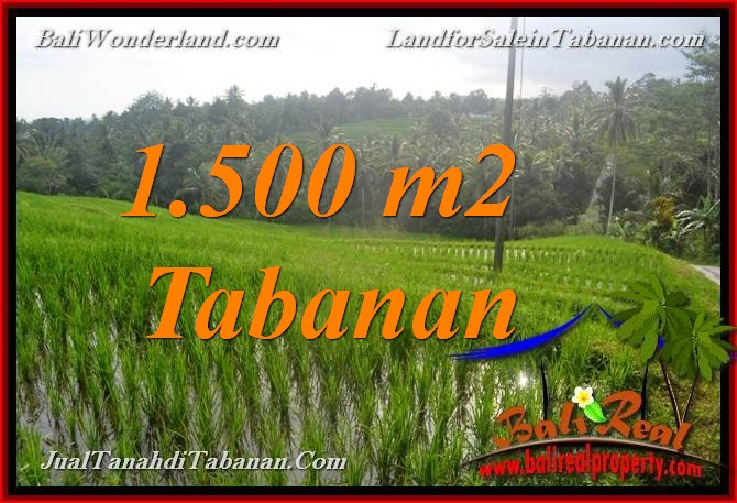 Exotic TABANAN 1,500 m2 LAND FOR SALE TJTB375