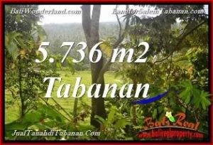 FOR SALE Beautiful 5,736 m2 LAND IN TABANAN BALI TJTB376