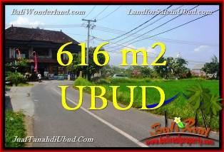 Affordable 616 m2 LAND FOR SALE IN UBUD BALI TJUB650