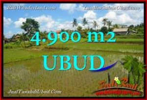 FOR SALE Beautiful PROPERTY 4,900 m2 LAND IN UBUD BALI TJUB652