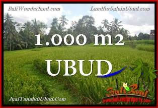 FOR SALE Beautiful PROPERTY LAND IN UBUD BALI INDONESIA TJUB653