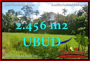 Exotic PROPERTY LAND IN Ubud Tegalalang FOR SALE TJUB654