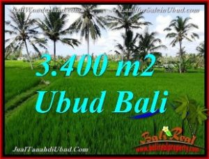 Beautiful 3,400 m2 LAND SALE IN UBUD TJUB656