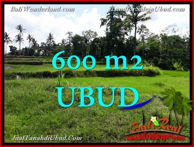 Affordable 600 m2 LAND IN UBUD BALI FOR SALE TJUB657