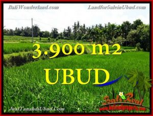 Exotic LAND IN Ubud Pejeng BALI FOR SALE TJUB658